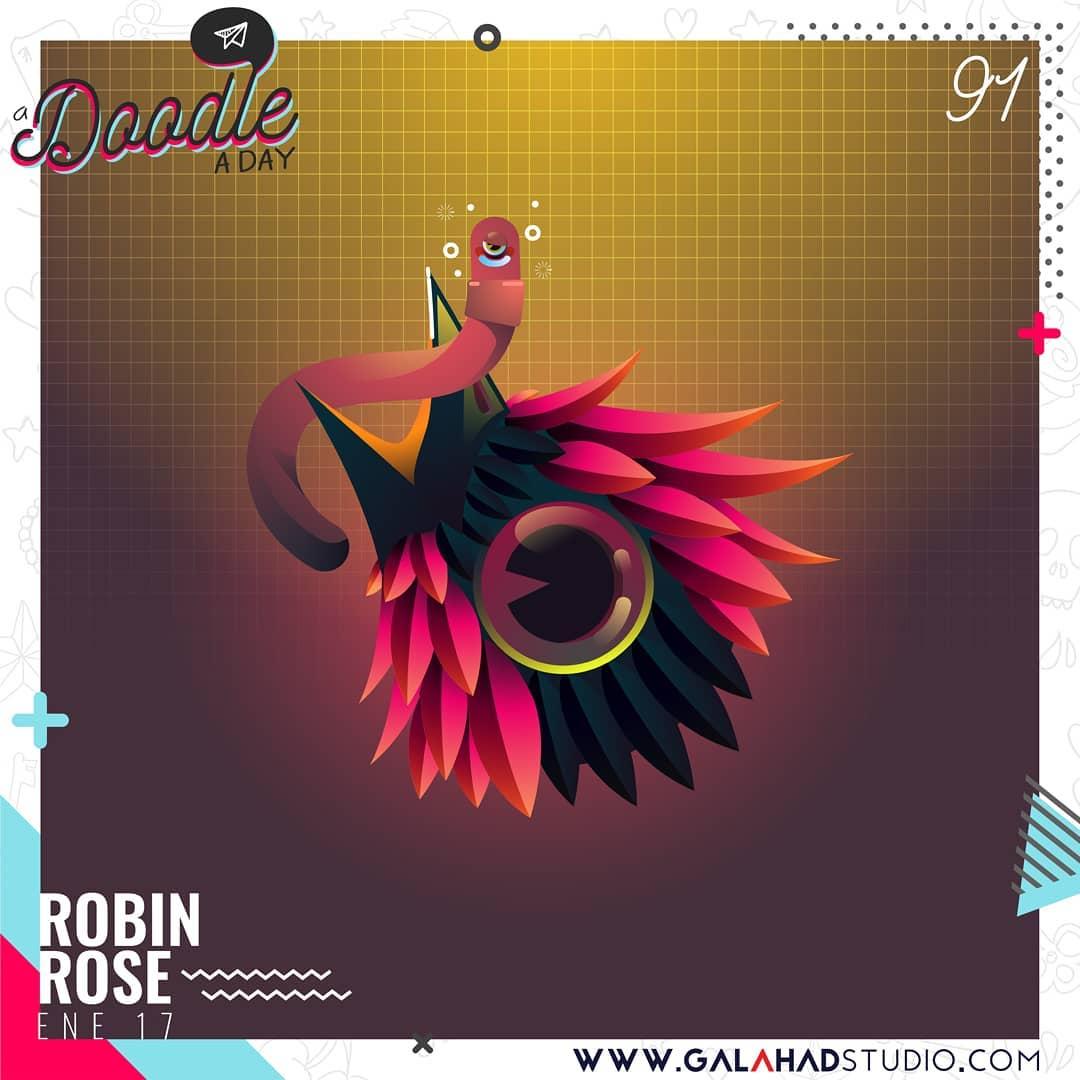 17_Robin